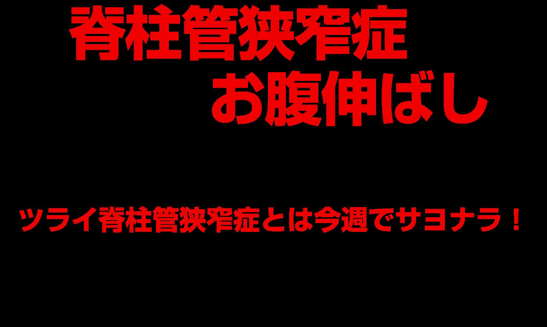 動画 ストレッチ 管 脊柱 症 狭窄